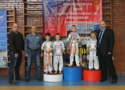 Кубок Новичка - 2019
