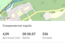 Скандинавская ходьба 28.08.2020_4